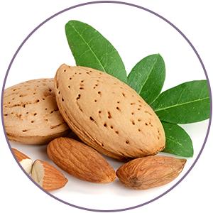 almond extreact