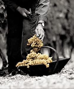 Courvoisier, Cognac, Brandy, VS, Gift, Christmas, grapes, artisan, craft