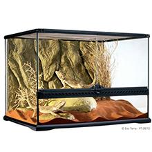 terrario de vidrio; terrario exoterra; reptiles