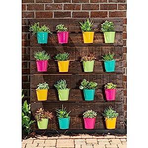 garden party planter multi color spring seeds succulent succulents painting