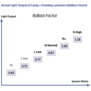 Understanding  Fluorescent Systems