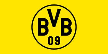 bvb emblem