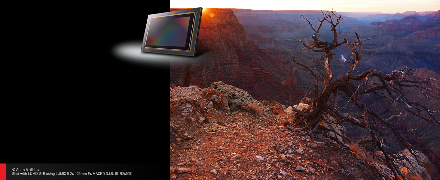 With Panasonic's highest level of resolution