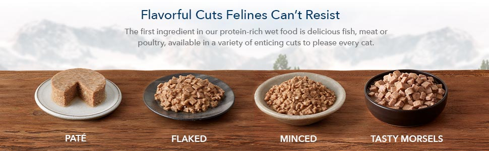 cat food, wet cat food, canned cat food, high protein cat food, cat food wet, senior, kitten food