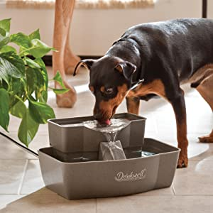 Dog Pet Fountain, Thirsty Dog, Multi-Tier Fountain, Drinkwell