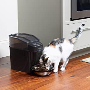 automatic feeder feed dispenser dog cat pet food bowl