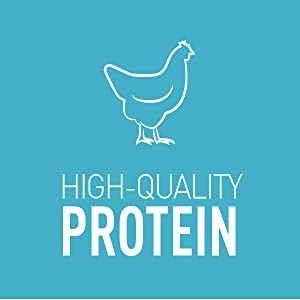High-Quality Protein, Chicken, Meat, Nutrition, Healthy, Wet Cat Food, Skin Health, Digestive
