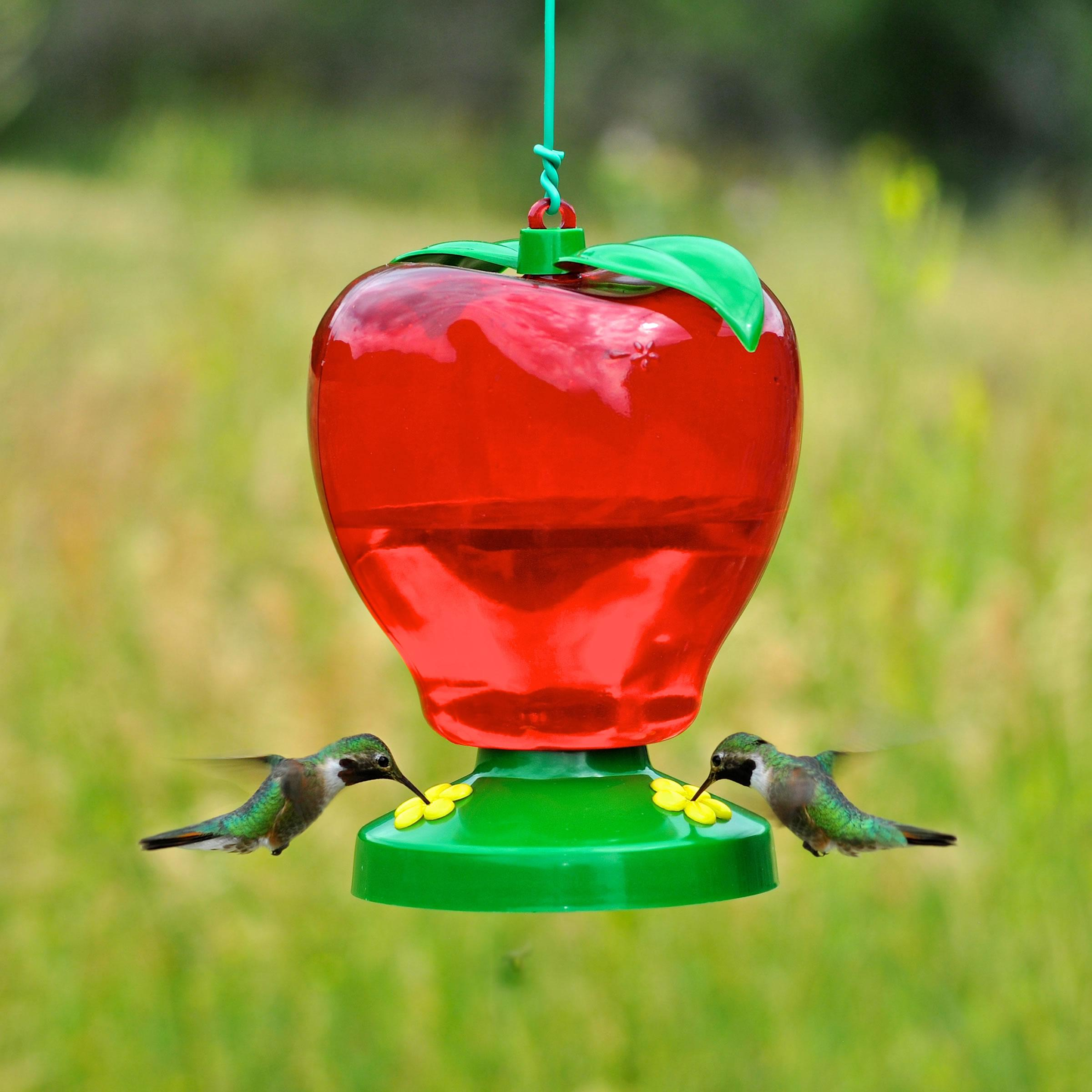 pennington feeders hummingbird ip walmart decorative com feeder glass oz