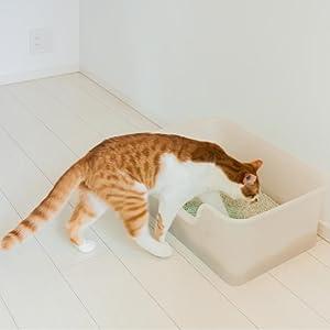 猫 トイレ 砂