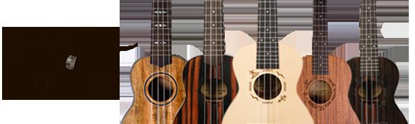 flight, flight ukuleles, ukulele, let your music take flight, instrument, ukulele music