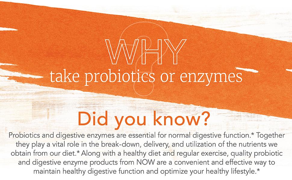 probiotics enzymes digestive vital effective quality diet healthy regular lifestyle nutrients