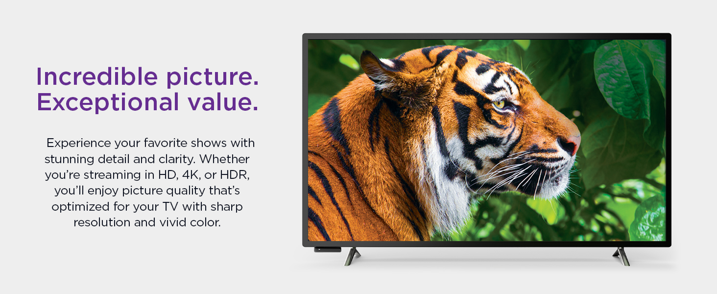 Roku premiere incredible picture, exceptional value