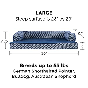 dog; cat; bed; sofa; couch; diamond; blue; large; big