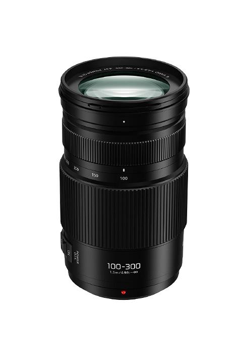 Lumix G H-FSA100300