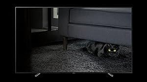 Samsung Q9F QLED 4K TV q black absolutely stunning blacks