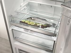 Aeg Kühlschrank Quietscht : Gorenje orb l kühlschrank mit gefrierfach a höhe