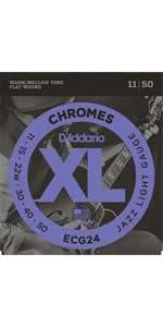 ECG24