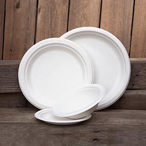 SugarCane Plates
