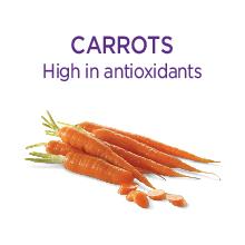 Grain Free wet cat food, grain free cat food, wellness complete health cat food, complete health pet