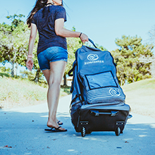 BACK PACK CARRY BAG WITH WHEELS