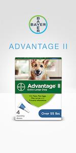 Advantage II Dog