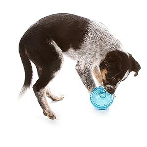 iq treat ball, dog iq treat ball, active feeding, dog active feeder, feeder, dog feeder, smart toy