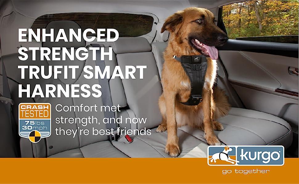 dog car travel safety harness
