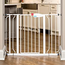 Amazon Com Regalo Easy Step Extra Wide Walk Thru Gate