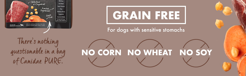 dry dog food dog food grain free limited ingredient sensitive stomach salmon pure natural dog food