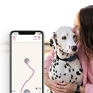 localizzatore GPS per cani