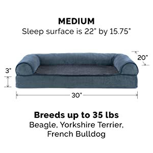 dog; cat; bed; sofa; couch; orion blue; medium