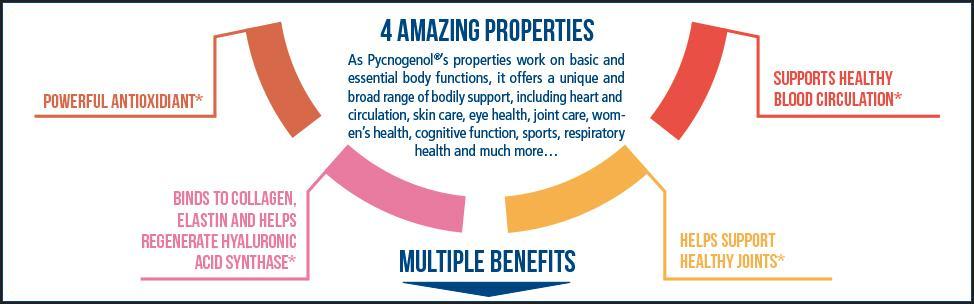 Amazon Com Healthy Origins Pycnogenol Nature S Super Antioxidant