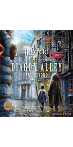 Harry Potter Diagon Alley Pop-Up