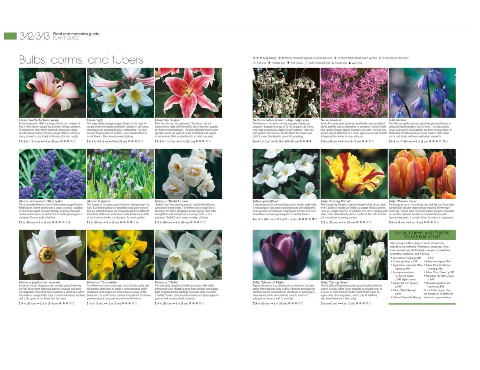 Encyclopedia Of Landscape Design Planning Building And Planting