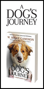 a dogs journey, bruce cameron, book, novel, dog movies, dog books, dvd, bluray, friendships, puppies