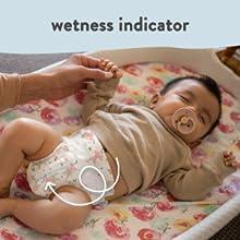 Wetness Indicator