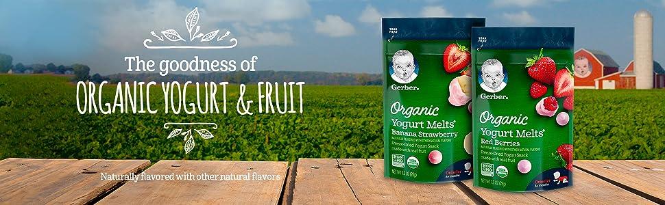 The goodness of organic yogurt & fruit