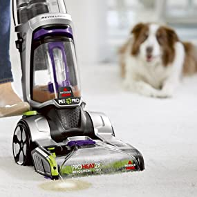 carpet cleaner;stain cleaner;stain remover;pet stain remover;fabric cleaner;pretreat
