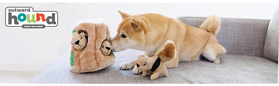 dog toy, plush dog toy, toys for dog