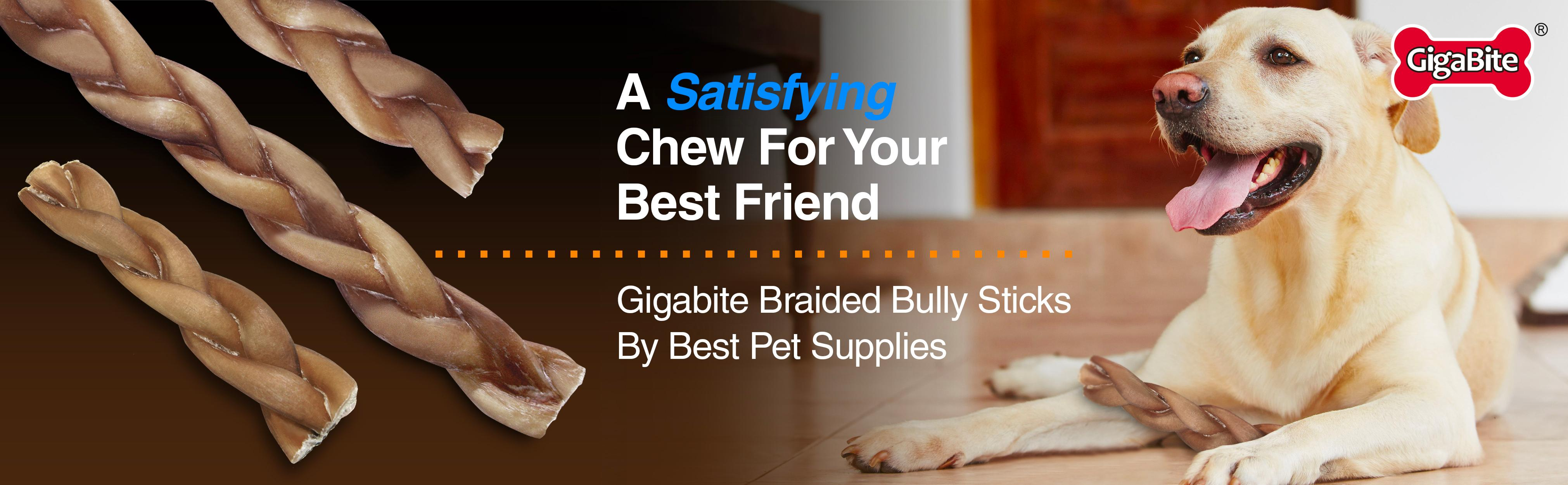 gigabite by best pet supplies usda fda certified odor free braided bully sticks. Black Bedroom Furniture Sets. Home Design Ideas