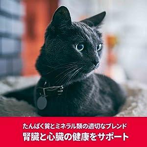 SD猫PRO腎臓・心臓