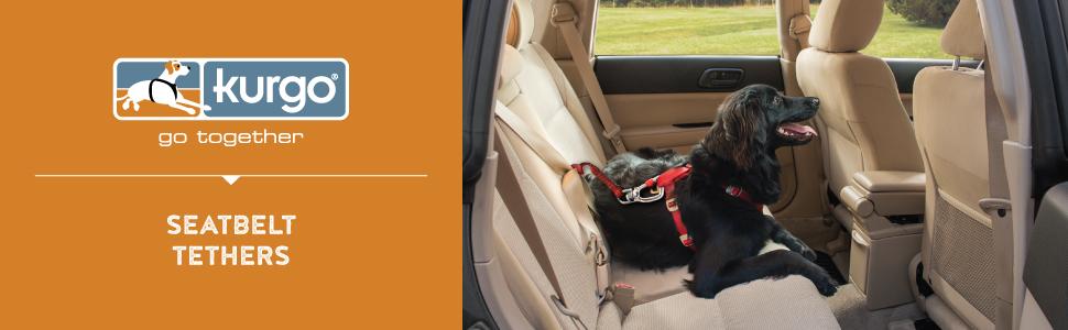 kurgo seatbelt tethers for dogs, dog seat belt, per seat belt, for small medium large dogs