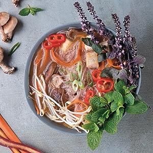 Sahara Rose, Eat Feel Fresh, Ayurveda, Cookbook, Alpha, DK, Paricara Plant-Based Pho