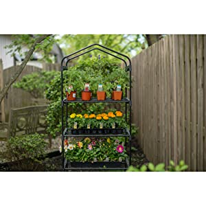 greenhouse,4-tier greenhouse, gardman, lawn & garden