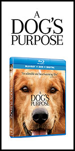 a dog's purpose, dogs purpose, novel, book, movie, bruce cameron, dog movies, dvds, family movies