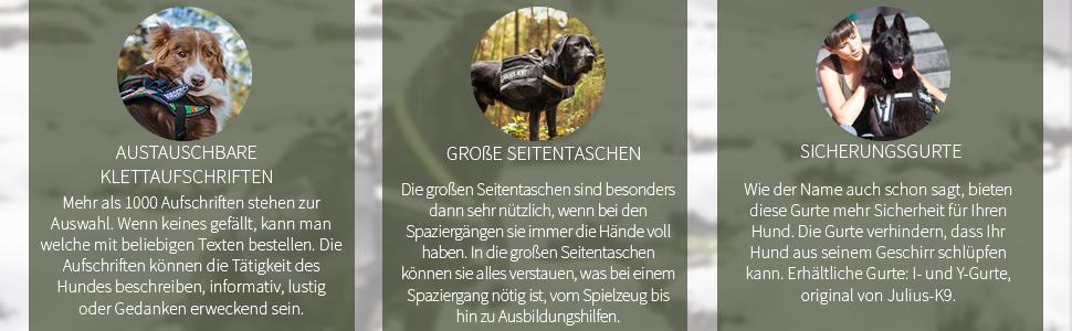 Julius K9 16sga 2 Sicherheitsgurtadapter Für Hunde 10 20 Kg Schwarz Haustier