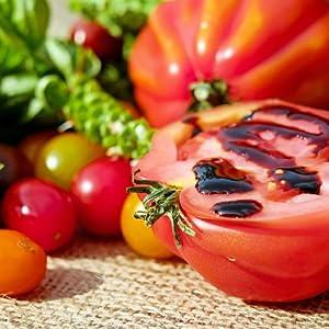 melchioni-family-vega-estrattore-a-freddo-di-frutt