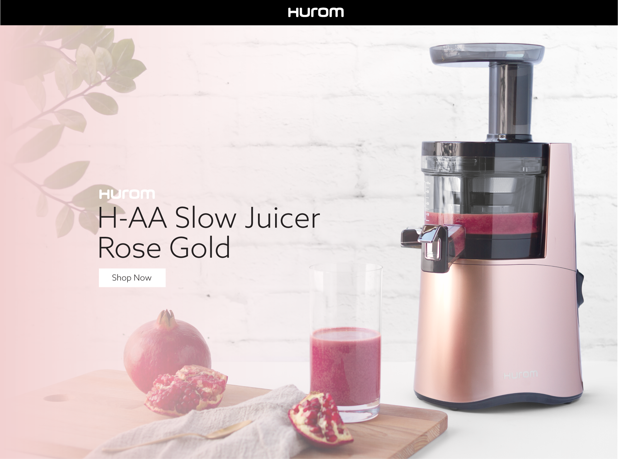 Hurom H Aa Slow Juicer Rose Gold : Amazon.com: Hurom H-AA Slow Juicer, Rose Gold: Kitchen & Dining