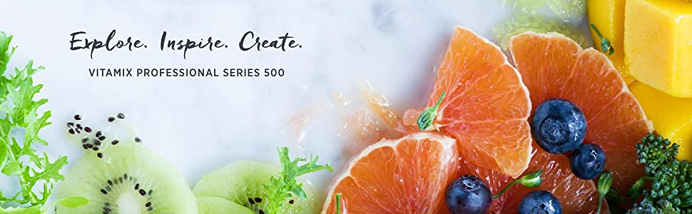 professional series 500, pro 500, vitamix pro 500, vitamix professional series 500