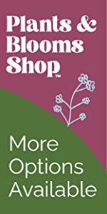 plants and blooms shop